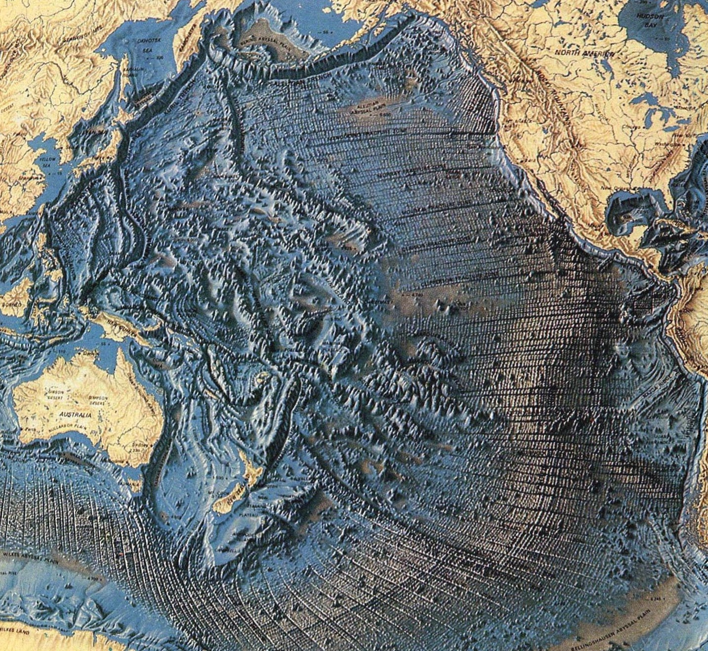 An Earth That Expanded Answers A Lot Of Science's ... Pacific Ocean Underwater Map